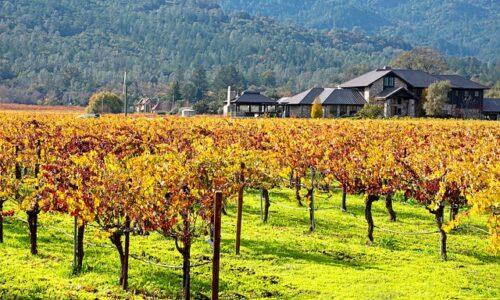 autumn-napa-valley